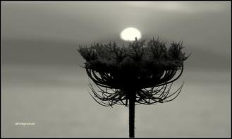 Φωτογραφία: Αθηνά Γαλανάκη