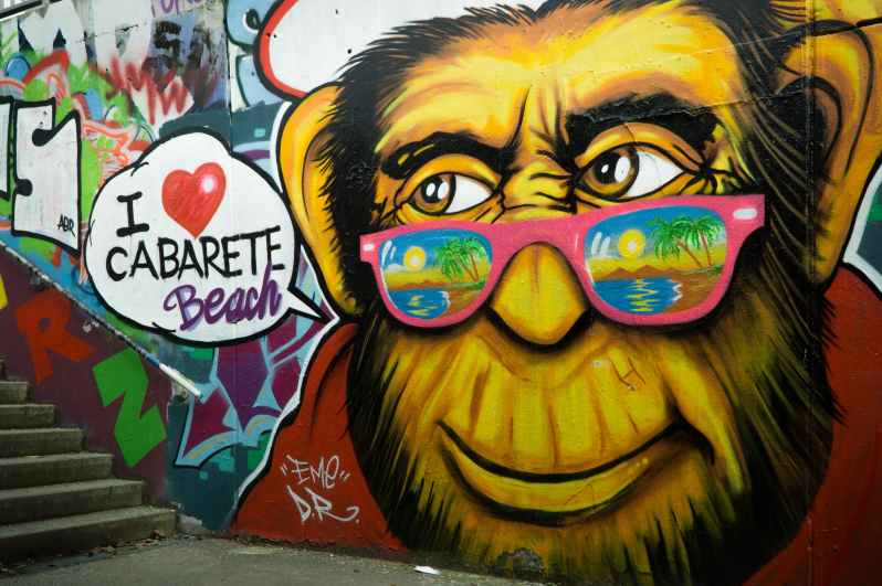 art artistic cabarete color