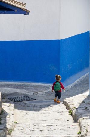blue-5067491_1920